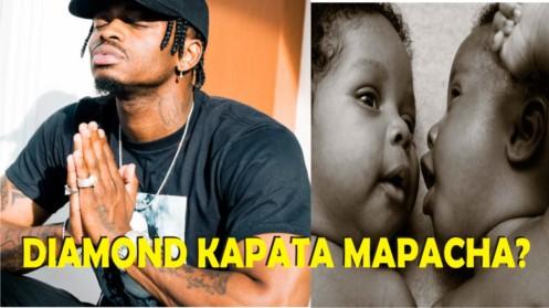 Thumbnail a_Mpasua Msonobari - Diamond Anatarajia Mapacha kutoka kwa Dada yake Zari